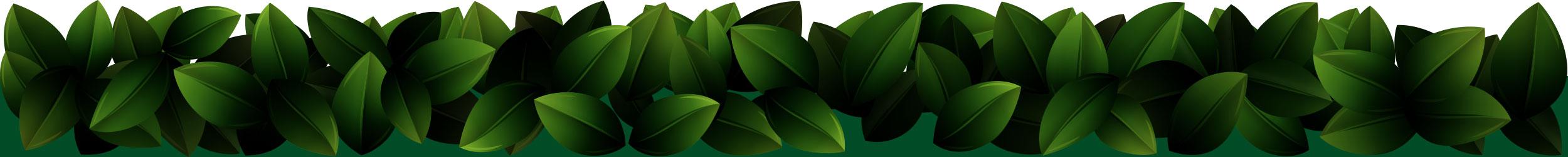leaf-border-3