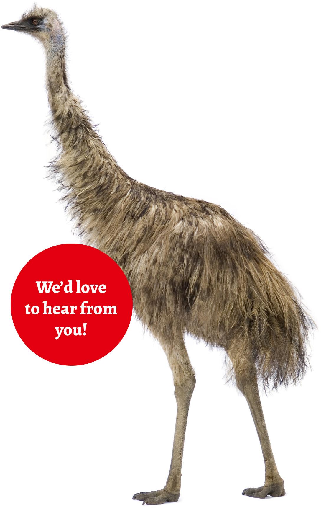 emu-contact-us-page