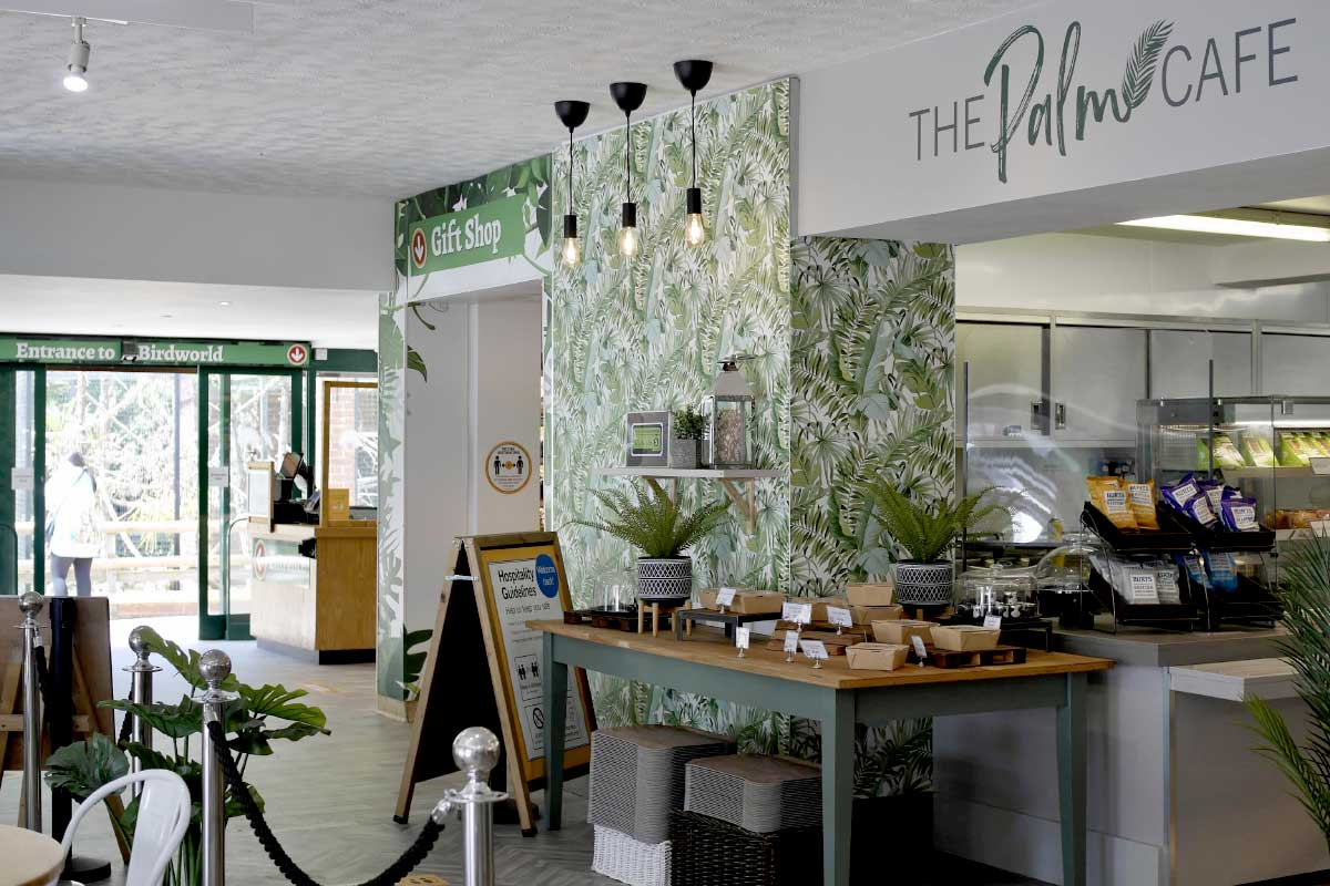 palm-cafe-interior
